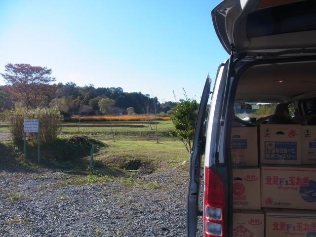 茨城県へ出張買取【数学に関する本を大量にお売り頂きました】