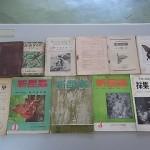 昔の昆虫雑誌