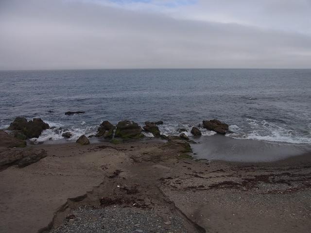 出張の様子 海