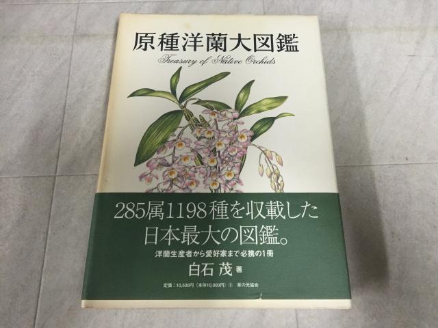 原種洋蘭大図鑑 白石茂 家の光協会 第1版 帯付