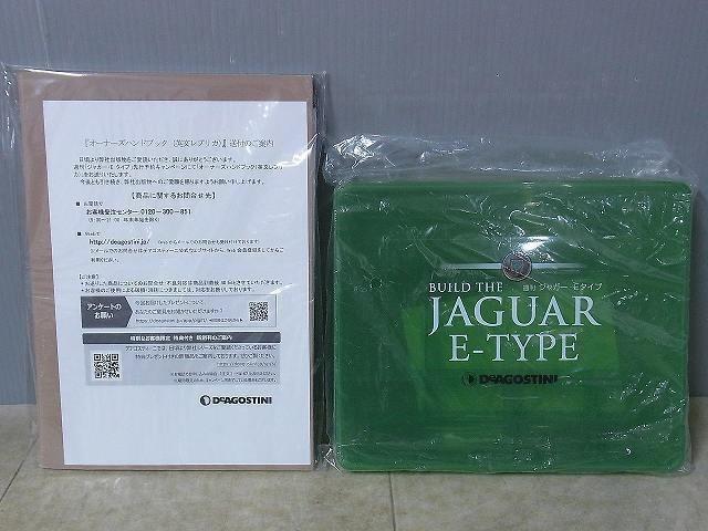 20190304_jaguar10