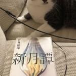 ミステリ作家 千澤のり子先生エッセイ第21回 「私の共感性羞恥作品」を掲載致しました。